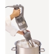 Robot coupe stick blender MP350 with whisk 34661